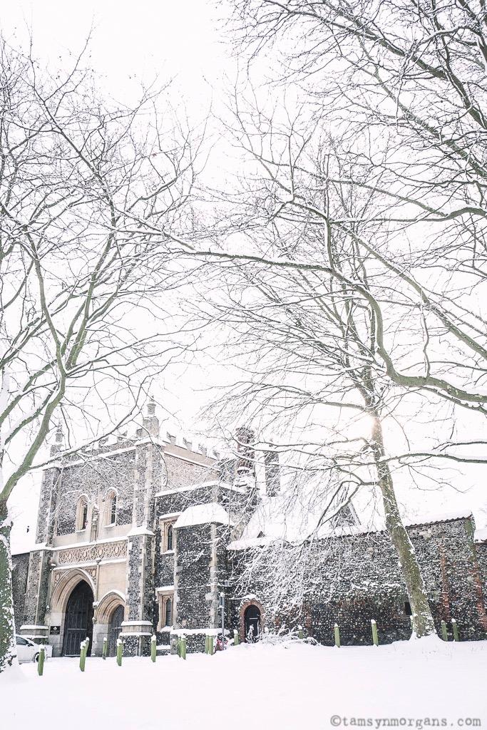 A winter wonderland in Norwich
