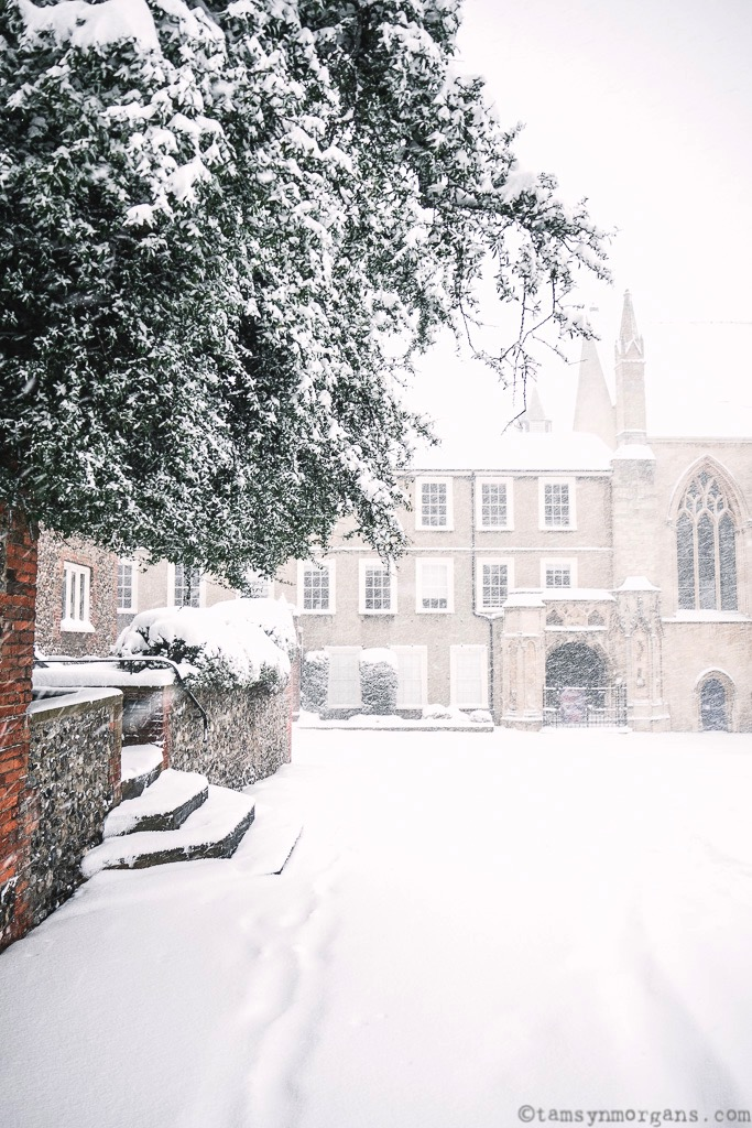 Cathedral Close in Norwich looking like a winter wonderland...